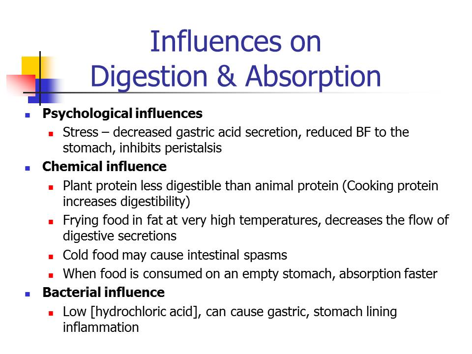 Digestion And Absorption Of Nutrients Dr Nizam Shapie